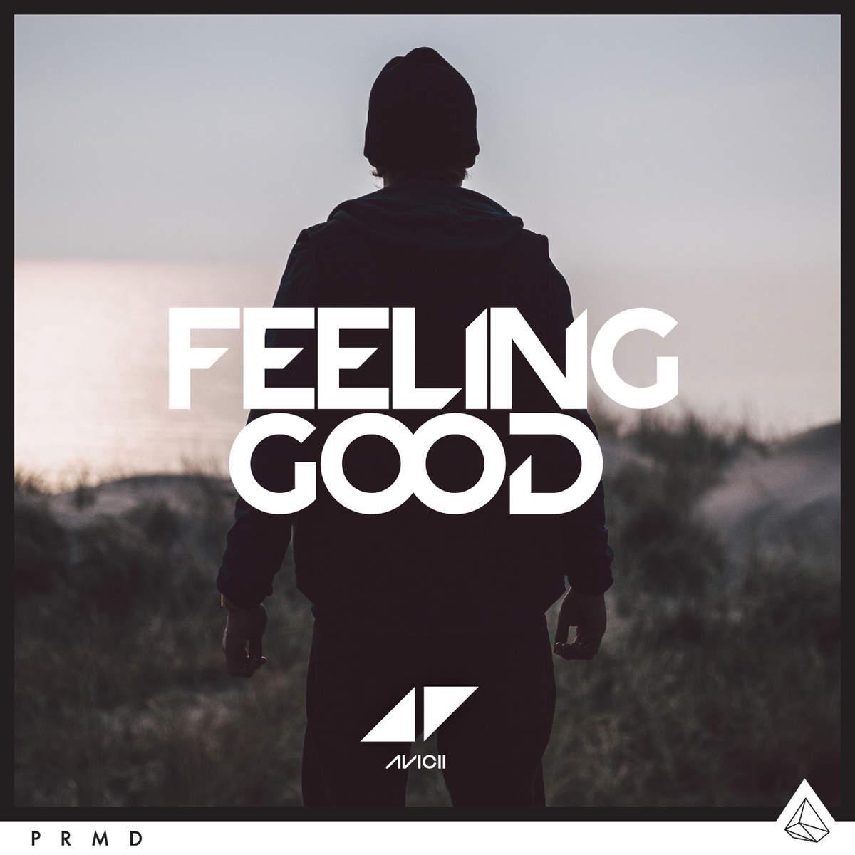 Avid - Feeling Good